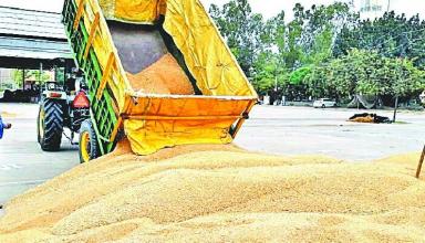 कृषि कानून: पंजाब के किसानों के खाते में पहली बार सीधा पहुंचा उनकी फसल का पैसा, बिना किसी बिचौलिए के सरकार ने खाते में भेजा पैसा
