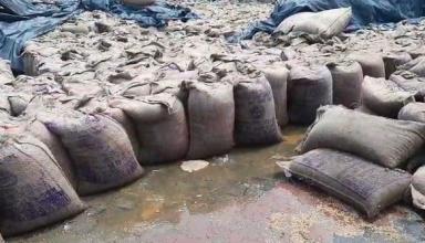 प्रशासन की लापरवाही से सैकड़ों कुंटल गेहूं बारिस से भीगा, DM ने दिए जॉच के आदेश