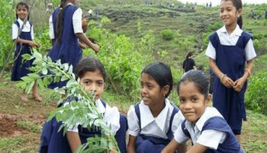 इस राज्य के मुख्यमंत्री ने किया ऐलान, कहा- पौधे लगाने पर छात्रों को मिलेंगे एक्स्ट्रा मार्क्स