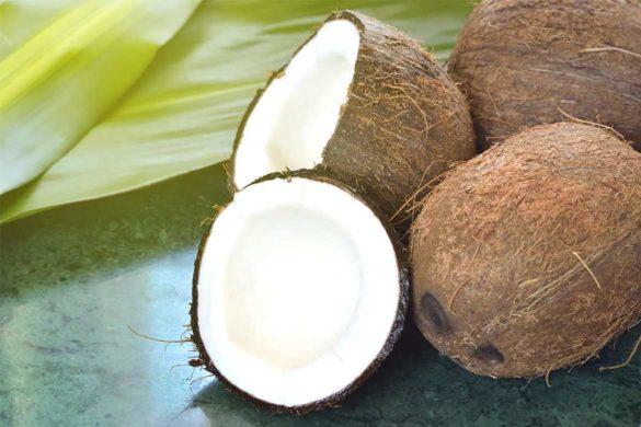 जानिए नारियल के फायदे और साइड इफेक्ट