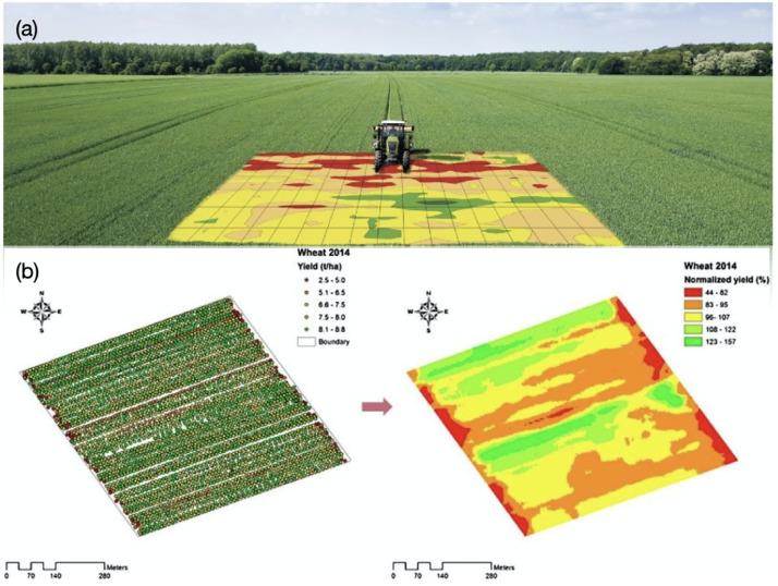 कृषि में आर्टिफिशियल इंटेलिजेंस मौसम के बदलते मिजाज के जोखिम को कम करता है