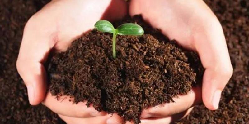 जैविक खेती: लोगो और टैगलाइन डिजाइन करने के लिए मिलेगा 51000 रुपये का नकद पुरस्कार