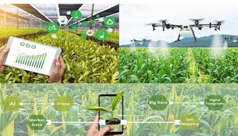 पारिस्थितिकी तंत्र में डिजिटल कृषि और पौधों की भूमिका