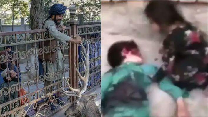 मासूम को बेरहमी से तालिबानियों ने उतारा मौत के घाट, VIDEO देख कांप जाएगा कलेजा…